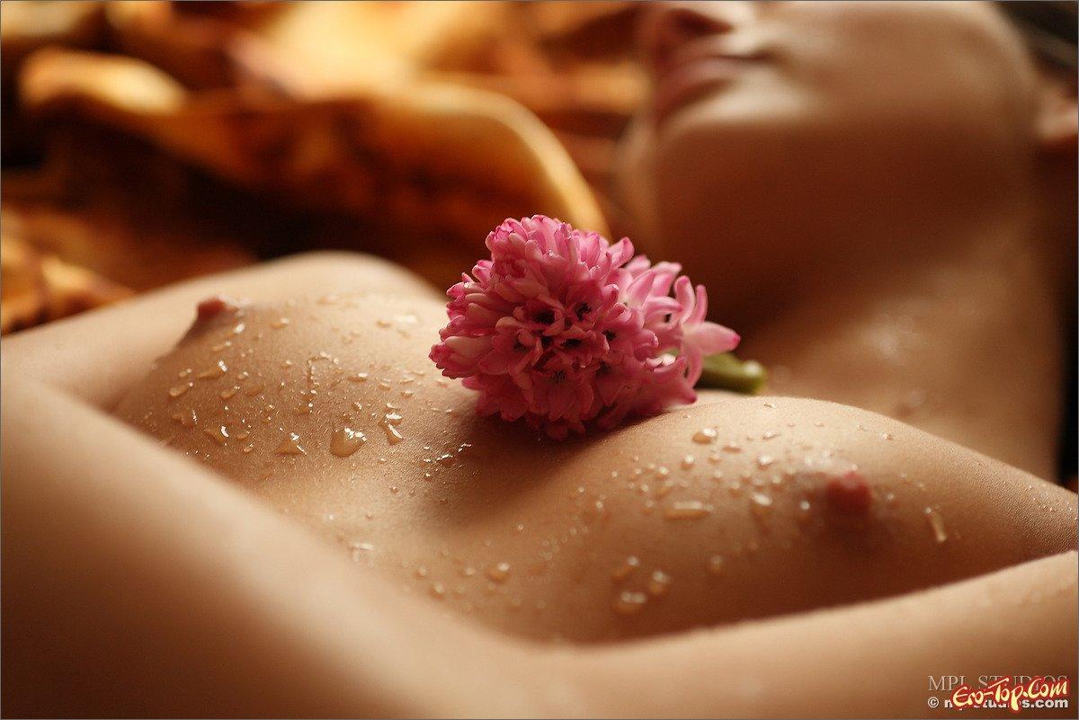 Erotic flowers pictures, amature gf pics